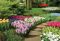 kens-gardens-store
